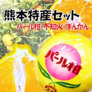 ぽんかんパール柑不知火3