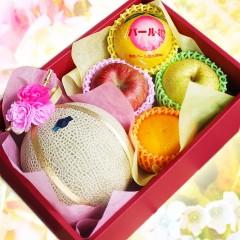 【贈答用 】フルーツとお花の贈り物 フルーツギフト (マスクメロン)