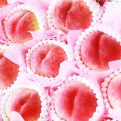 【 旬の産地 】完熟 桃 もも 秀品  果汁の瑞々しい1玉 (7玉~9玉(約2.5kg))