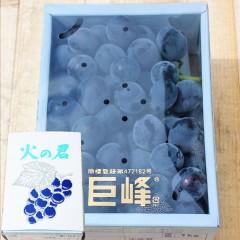【 産地直送 】 熊本県産 巨峰(きょほう)秀品 1kg 化粧箱入り