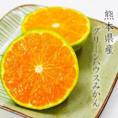 【 贈答用 】 熊本県産グリーンハウスみかん
