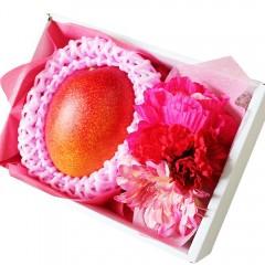 【贈答用】 フルーツとお花の贈り物 フルーツギフト 完熟マンゴー